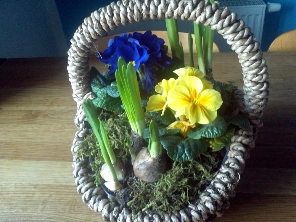 Frühling, bald bist du da...